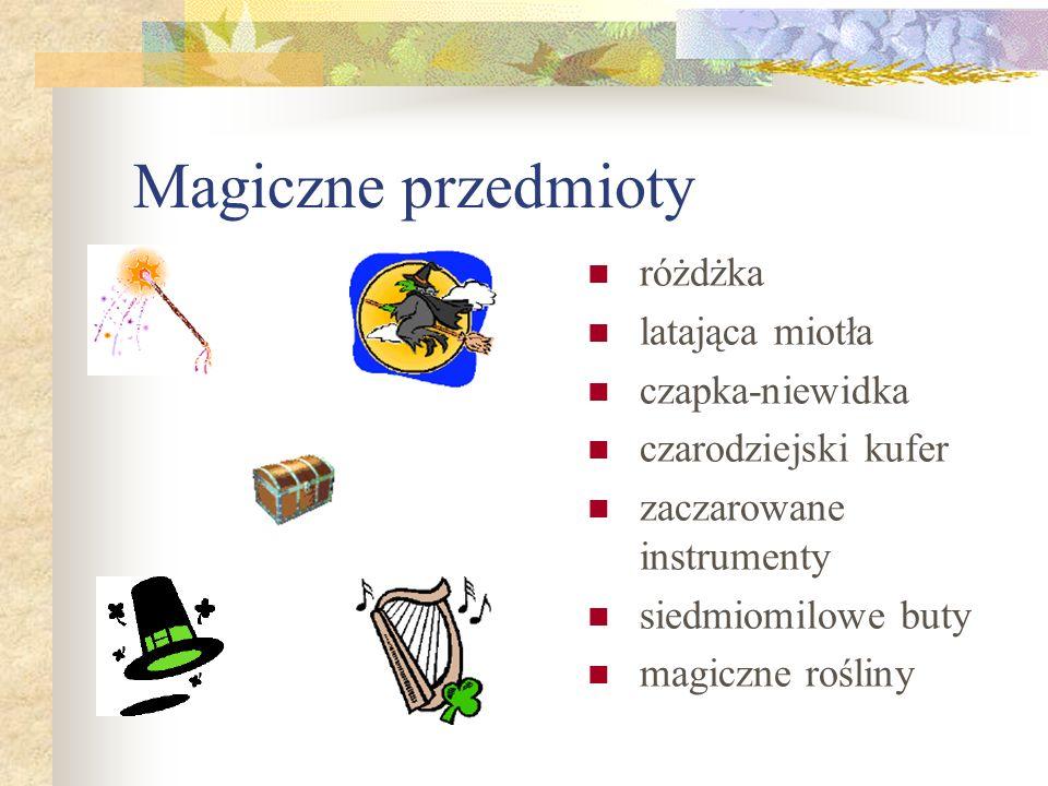 Magiczne przedmioty różdżka latająca miotła czapka-niewidka czarodziejski kufer zaczarowane instrumenty siedmiomilowe buty magiczne rośliny