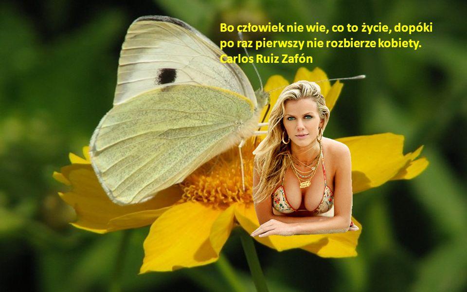 Bo człowiek nie wie, co to życie, dopóki po raz pierwszy nie rozbierze kobiety. Carlos Ruiz Zafón