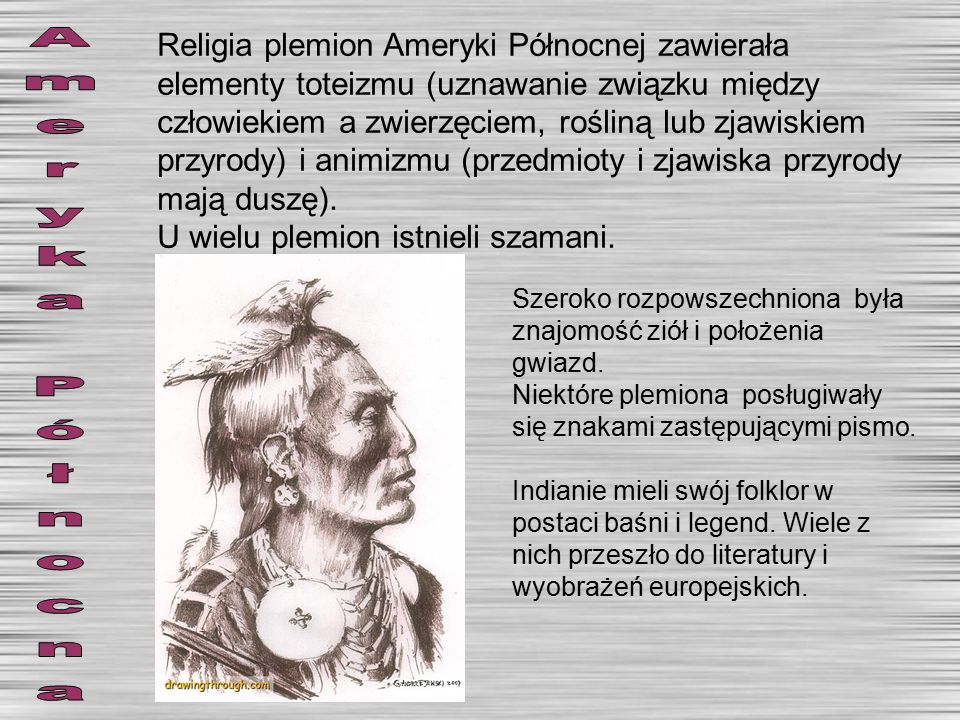 Religia plemion Ameryki Północnej zawierała elementy toteizmu (uznawanie związku między człowiekiem a zwierzęciem, rośliną lub zjawiskiem przyrody) i animizmu (przedmioty i zjawiska przyrody mają duszę).
