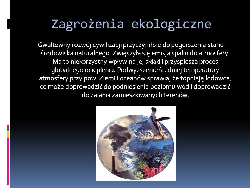 Zagrożenia ekologiczne Gwałtowny rozwój cywilizacji przyczynił sie do pogorszenia stanu środowiska naturalnego.