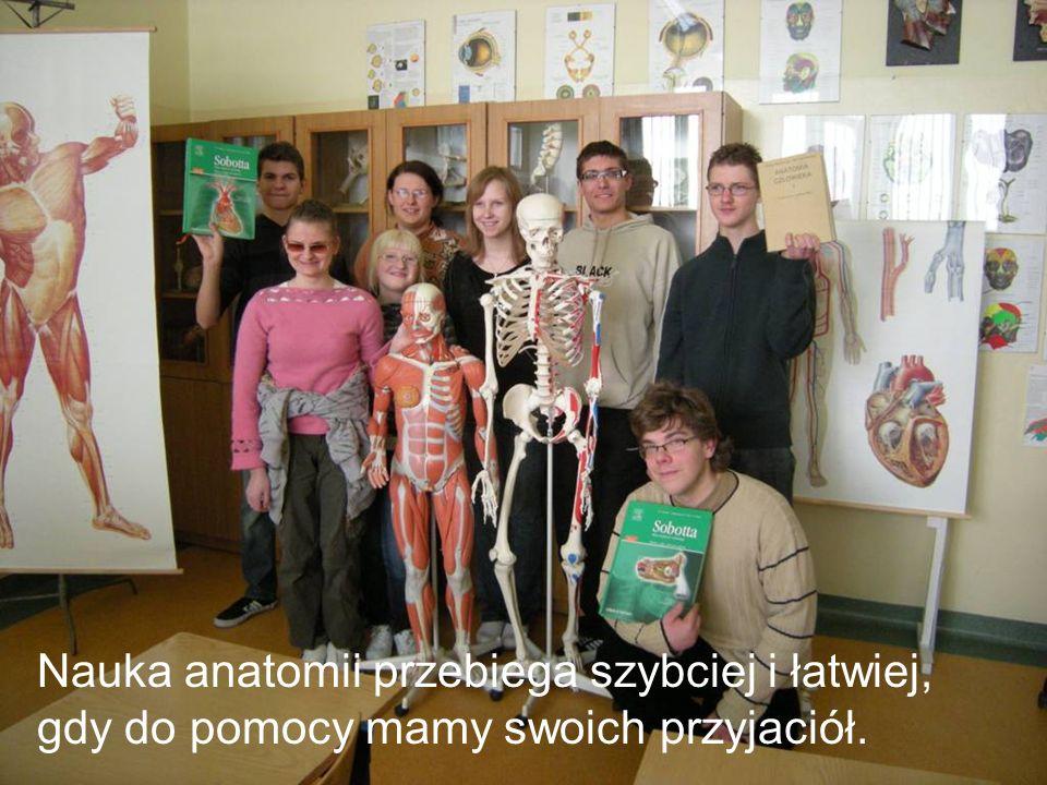 Nauka anatomii przebiega szybciej i łatwiej, gdy do pomocy mamy swoich przyjaciół.