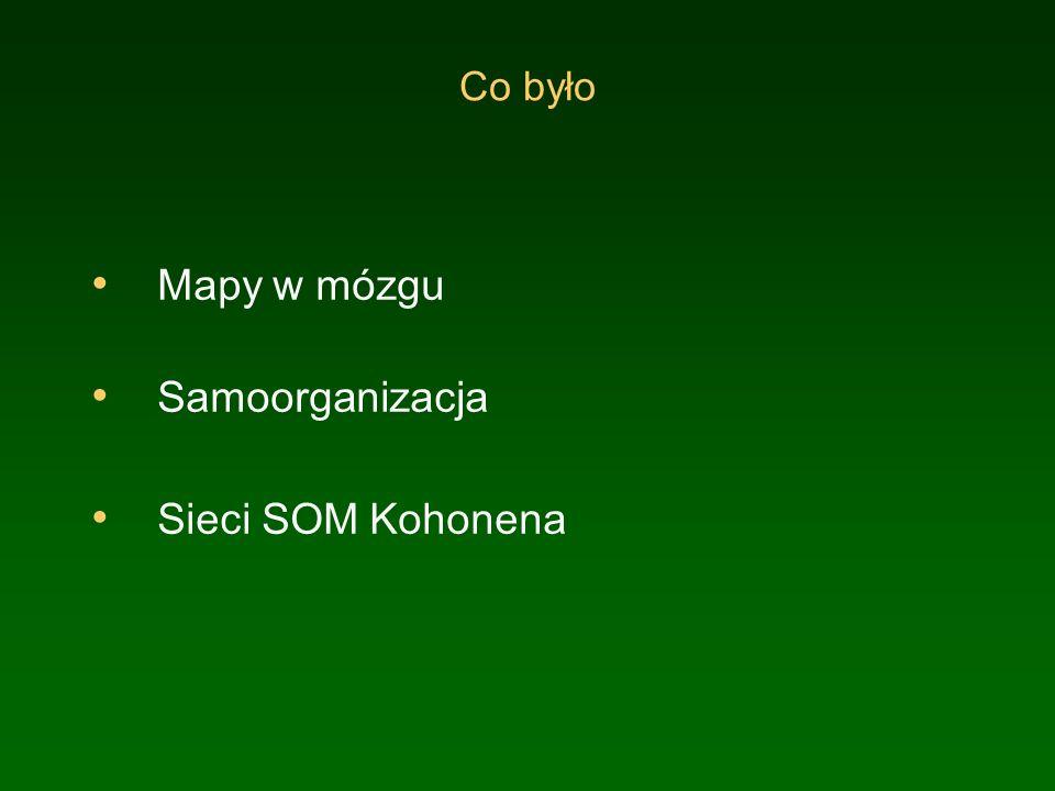 Co było Mapy w mózgu Samoorganizacja Sieci SOM Kohonena