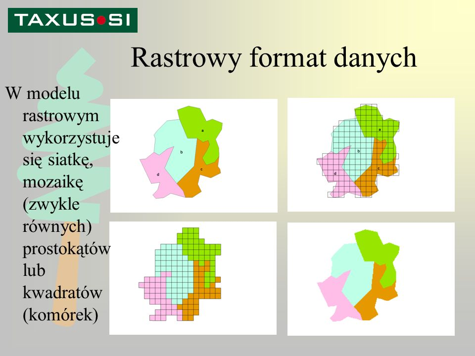 Rastrowy format danych W modelu rastrowym wykorzystuje się siatkę, mozaikę (zwykle równych) prostokątów lub kwadratów (komórek)
