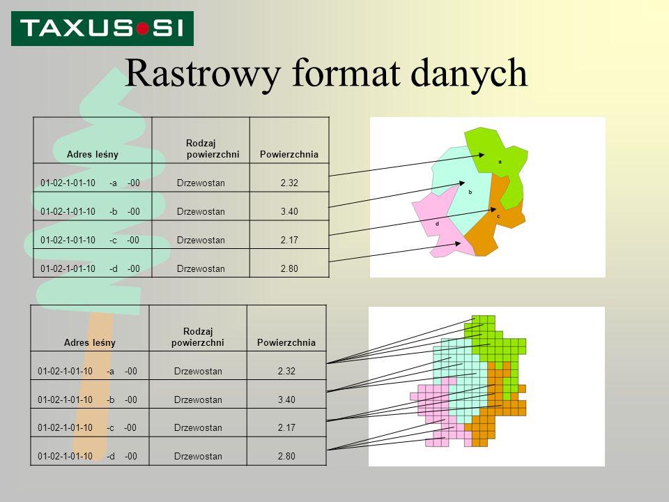 Rastrowy format danych Adres leśny Rodzaj powierzchniPowierzchnia 01-02-1-01-10 -a -00Drzewostan2.32 01-02-1-01-10 -b -00Drzewostan3.40 01-02-1-01-10 -c -00Drzewostan2.17 01-02-1-01-10 -d -00Drzewostan2.80 Adres leśny Rodzaj powierzchniPowierzchnia 01-02-1-01-10 -a -00Drzewostan2.32 01-02-1-01-10 -b -00Drzewostan3.40 01-02-1-01-10 -c -00Drzewostan2.17 01-02-1-01-10 -d -00Drzewostan2.80