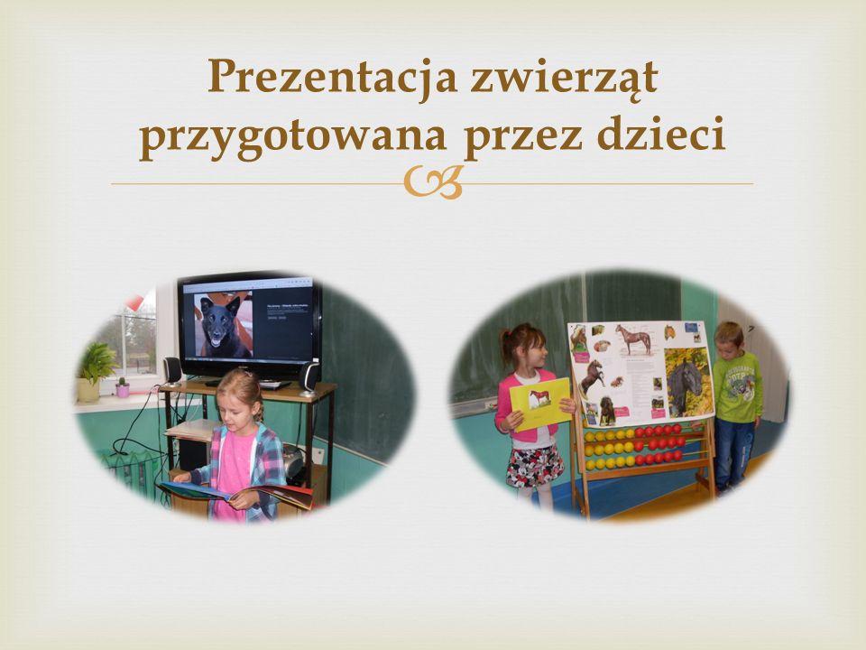  Prezentacja zwierząt przygotowana przez dzieci