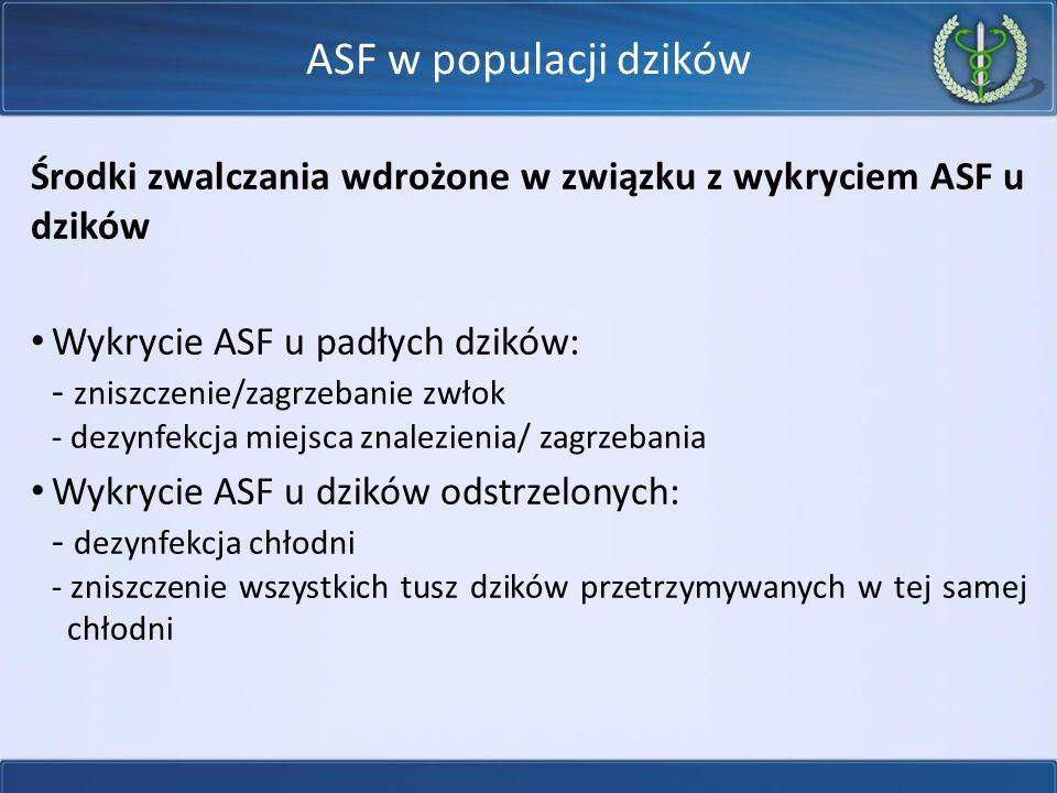 Środki zwalczania wdrożone w związku z wykryciem ASF u dzików Wykrycie ASF u padłych dzików: - zniszczenie/zagrzebanie zwłok - dezynfekcja miejsca znalezienia/ zagrzebania Wykrycie ASF u dzików odstrzelonych: - dezynfekcja chłodni - zniszczenie wszystkich tusz dzików przetrzymywanych w tej samej chłodni ASF w populacji dzików