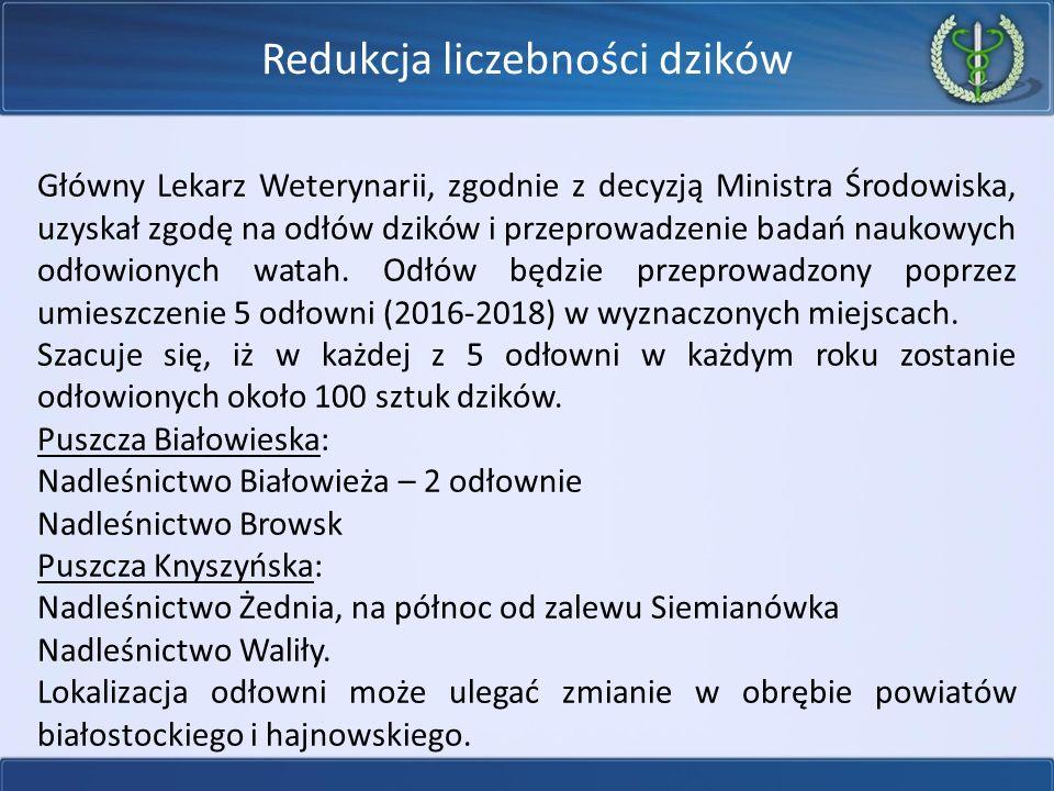 Główny Lekarz Weterynarii, zgodnie z decyzją Ministra Środowiska, uzyskał zgodę na odłów dzików i przeprowadzenie badań naukowych odłowionych watah.