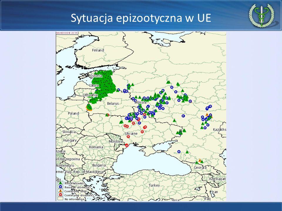 Sytuacja epizootyczna w UE