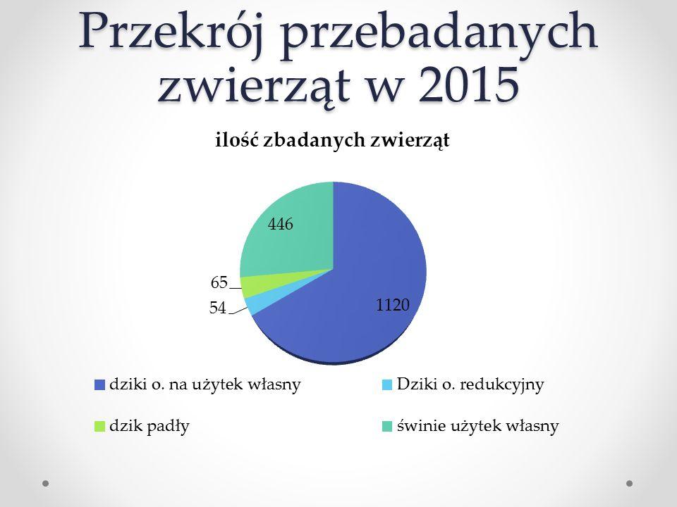 Przekrój przebadanych zwierząt w 2015