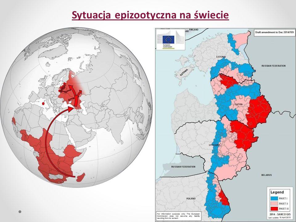 Sytuacja epizootyczna na świecie