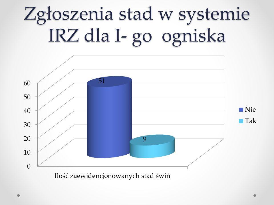 Zgłoszenia stad w systemie IRZ dla I- go ogniska