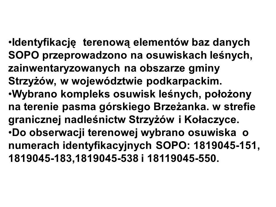 Identyfikację terenową elementów baz danych SOPO przeprowadzono na osuwiskach leśnych, zainwentaryzowanych na obszarze gminy Strzyżów, w województwie podkarpackim.