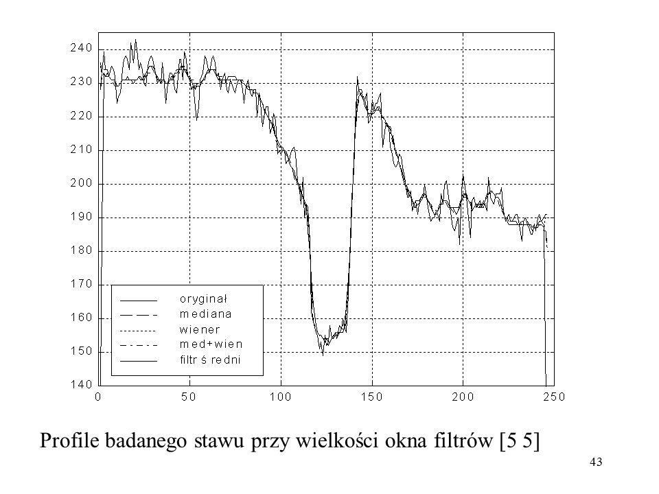 43 Profile badanego stawu przy wielkości okna filtrów [5 5]
