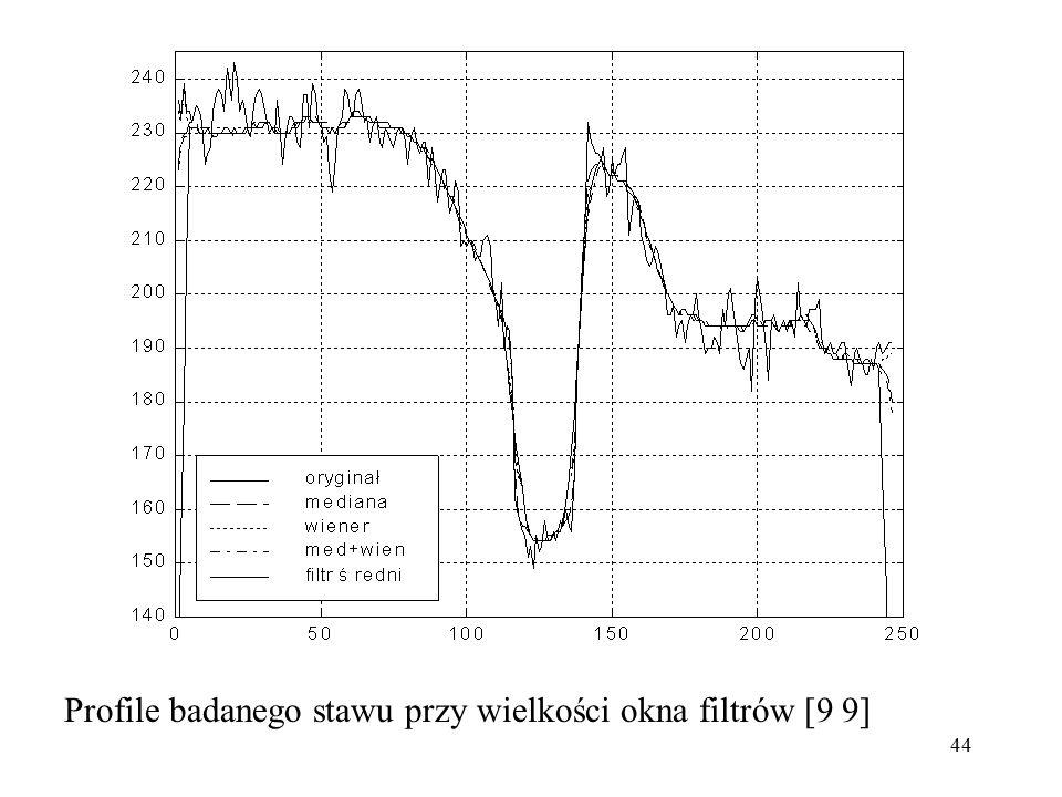 44 Profile badanego stawu przy wielkości okna filtrów [9 9]