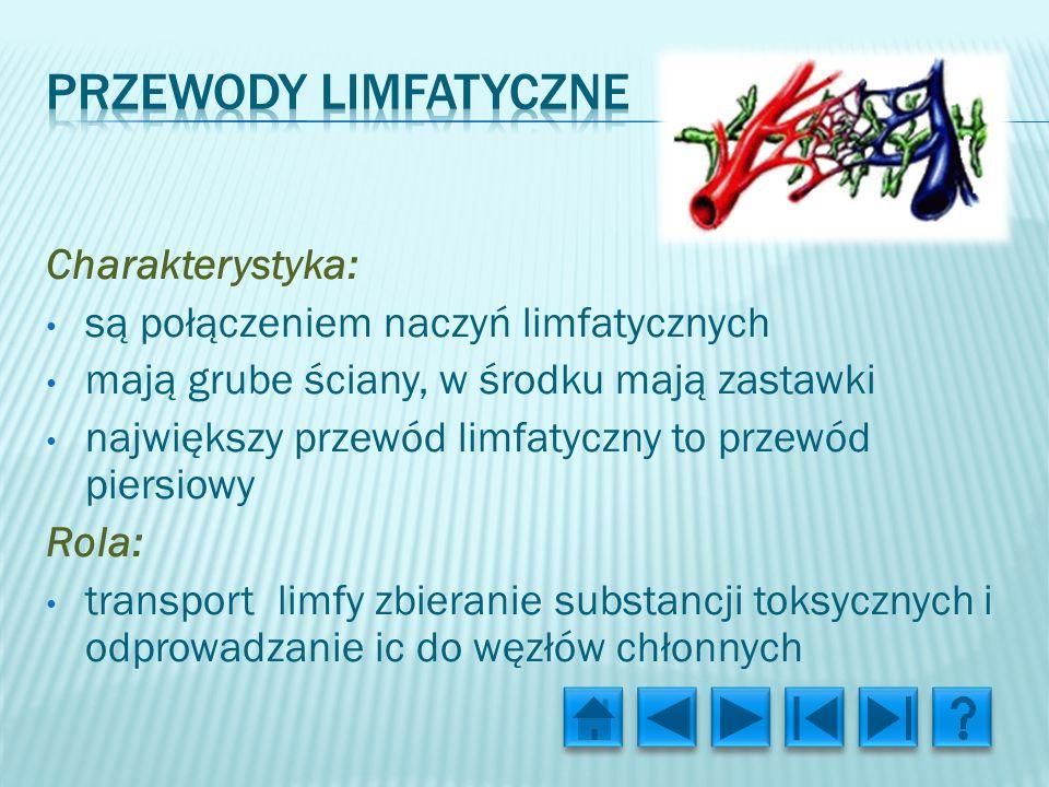 Charakterystyka: są połączeniem naczyń limfatycznych mają grube ściany, w środku mają zastawki największy przewód limfatyczny to przewód piersiowy Rola: transport limfy zbieranie substancji toksycznych i odprowadzanie ic do węzłów chłonnych