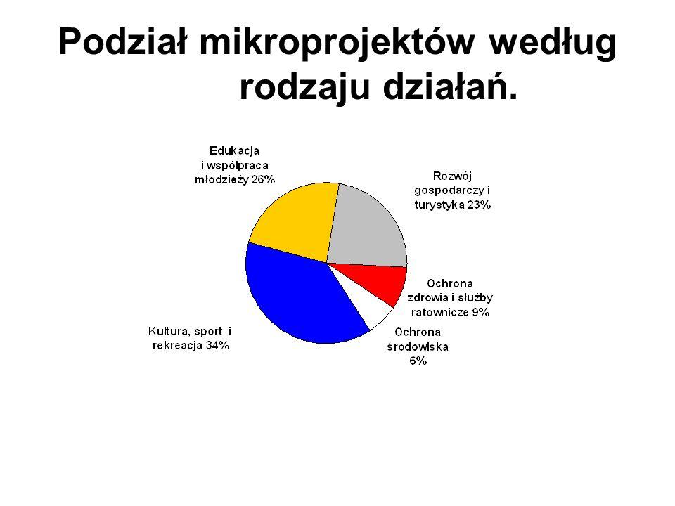 Podział mikroprojektów według rodzaju działań.