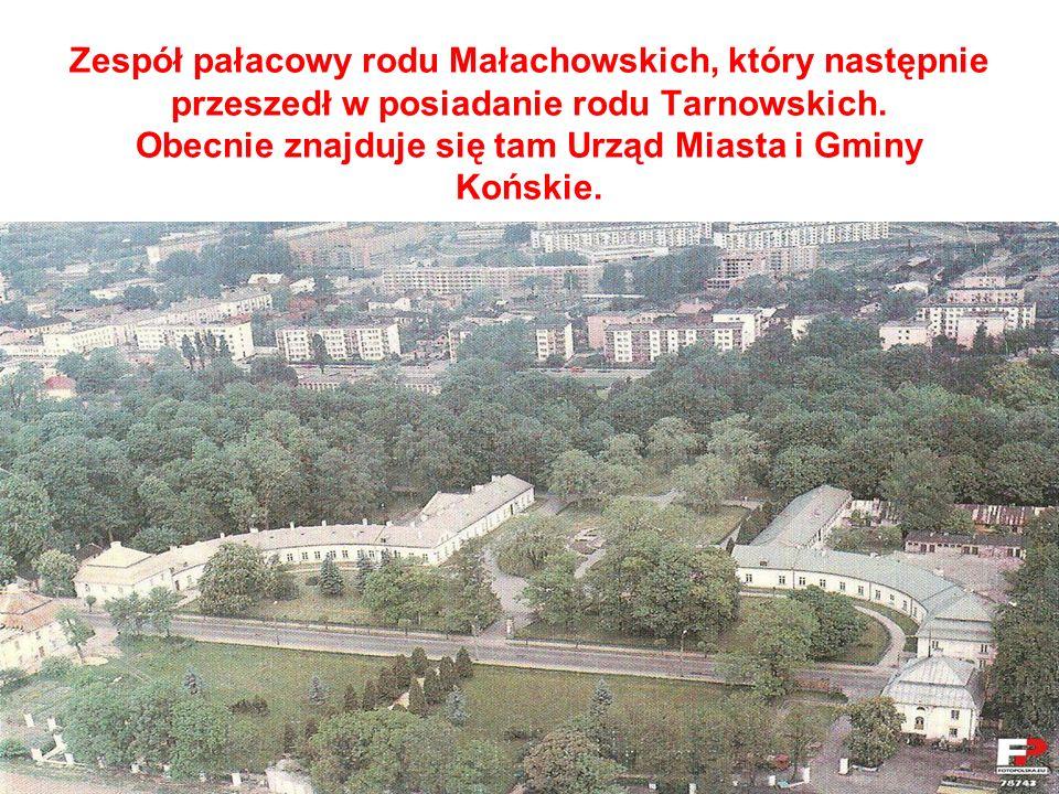 Zespół pałacowy rodu Małachowskich, który następnie przeszedł w posiadanie rodu Tarnowskich. Obecnie znajduje się tam Urząd Miasta i Gminy Końskie.