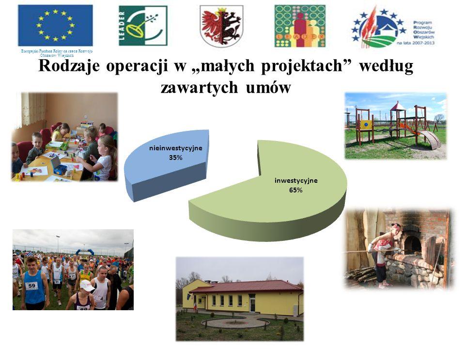 """Rodzaje operacji w """"małych projektach według zawartych umów Europejski Fundusz Rolny na rzecz Rozwoju Obszarów Wiejskich"""