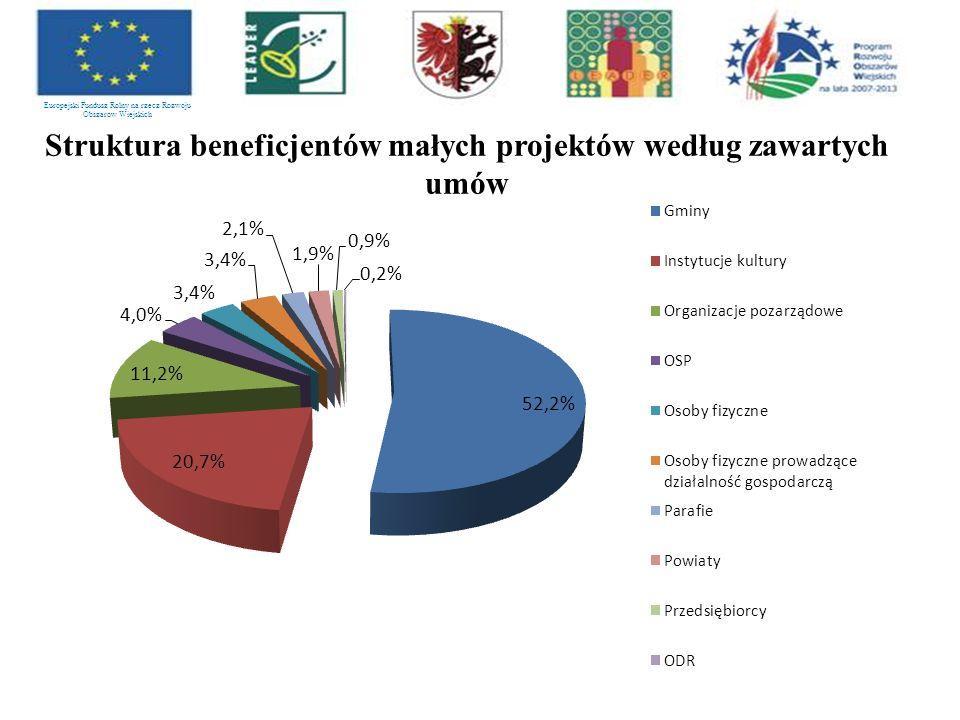Struktura beneficjentów małych projektów według zawartych umów