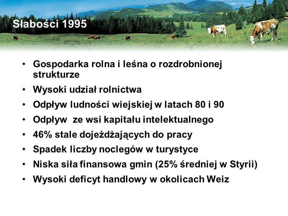 Słabości 1995 Gospodarka rolna i leśna o rozdrobnionej strukturze Wysoki udział rolnictwa Odpływ ludności wiejskiej w latach 80 i 90 Odpływ ze wsi kapitału intelektualnego 46% stale dojeżdżających do pracy Spadek liczby noclegów w turystyce Niska siła finansowa gmin (25% średniej w Styrii) Wysoki deficyt handlowy w okolicach Weiz