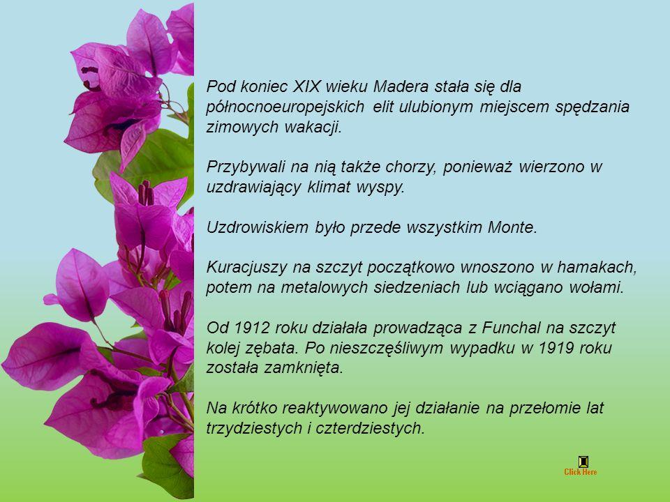 www.rotfl.com.pl jokoretsina Foto własne oprócz nr 5,55,72 Muzyka z Madery, Ouvi O Passarinho