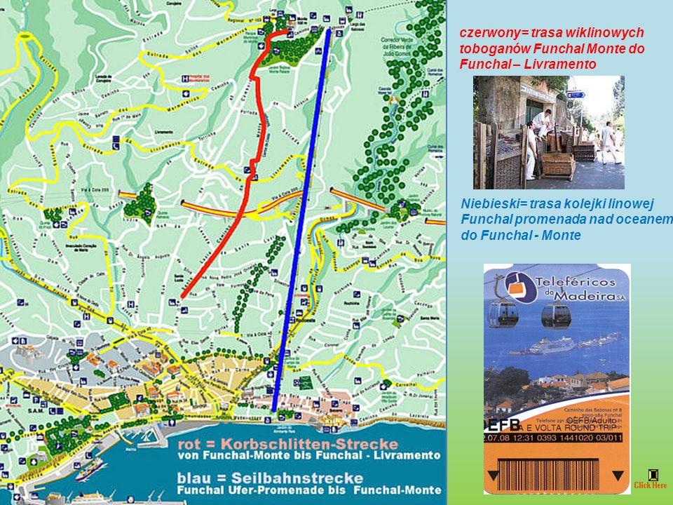 Pod koniec XIX wieku Madera stała się dla północnoeuropejskich elit ulubionym miejscem spędzania zimowych wakacji. Przybywali na nią także chorzy, pon