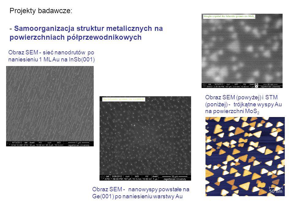 Projekty badawcze: - Samoorganizacja struktur metalicznych na powierzchniach półprzewodnikowych Obraz SEM - nanowyspy powstałe na Ge(001) po naniesieniu warstwy Au Obraz SEM (powyżej) i STM (poniżej) - trójkątne wyspy Au na powierzchni MoS 2 Obraz SEM - sieć nanodrutów po naniesieniu 1 ML Au na InSb(001)