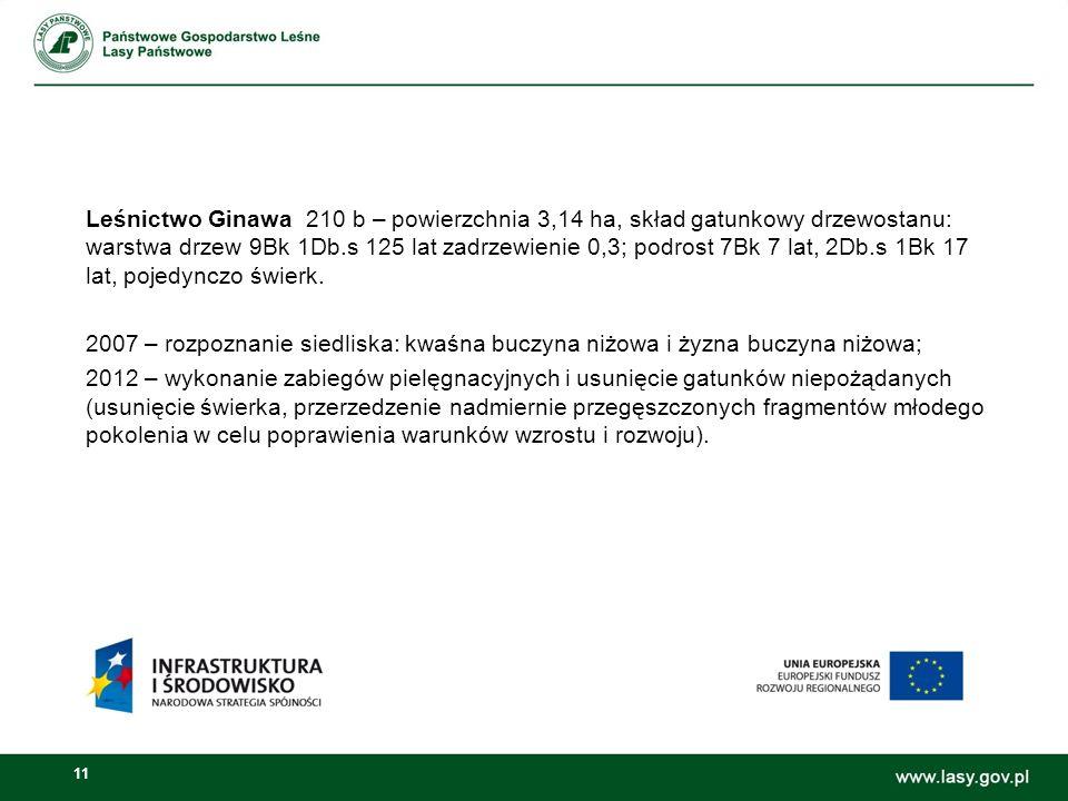 11 Leśnictwo Ginawa 210 b – powierzchnia 3,14 ha, skład gatunkowy drzewostanu: warstwa drzew 9Bk 1Db.s 125 lat zadrzewienie 0,3; podrost 7Bk 7 lat, 2Db.s 1Bk 17 lat, pojedynczo świerk.