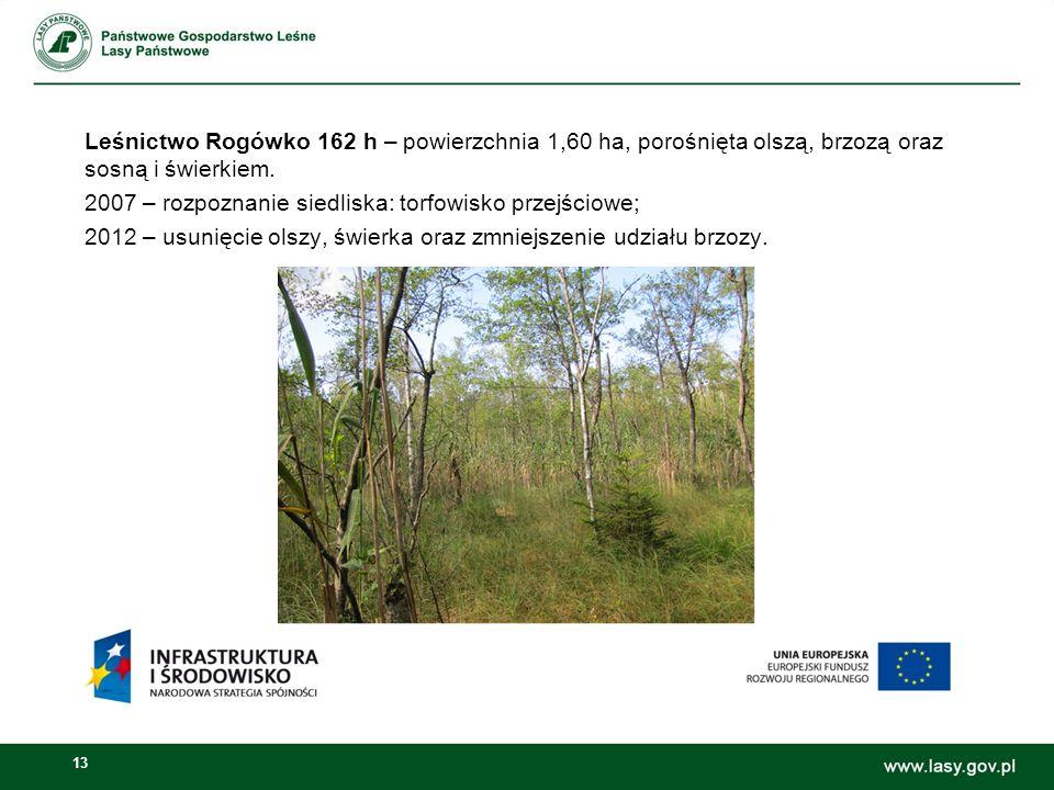 13 Leśnictwo Rogówko 162 h – powierzchnia 1,60 ha, porośnięta olszą, brzozą oraz sosną i świerkiem.