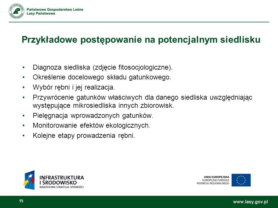 15 Przykładowe postępowanie na potencjalnym siedlisku Diagnoza siedliska (zdjęcie fitosocjologiczne).