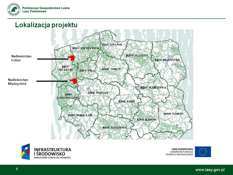 5 Lokalizacja projektu Nadleśnictwo Międzychód Nadleśnictwo Łobez