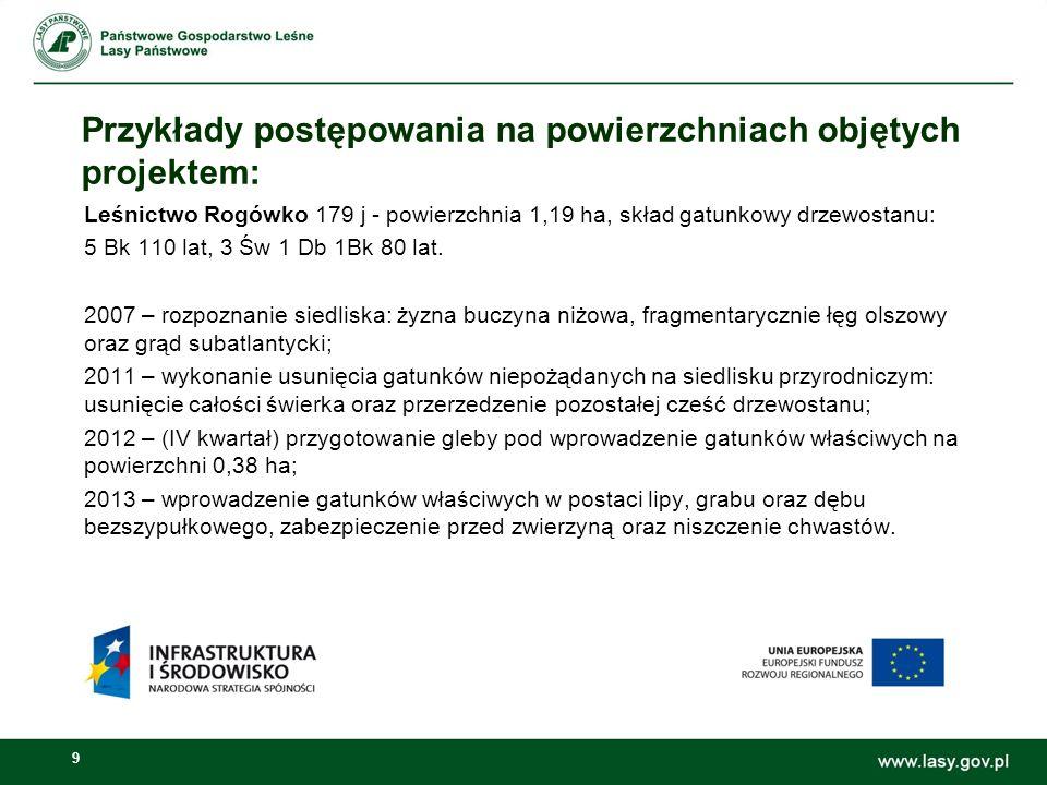 9 Przykłady postępowania na powierzchniach objętych projektem: Leśnictwo Rogówko 179 j - powierzchnia 1,19 ha, skład gatunkowy drzewostanu: 5 Bk 110 lat, 3 Św 1 Db 1Bk 80 lat.