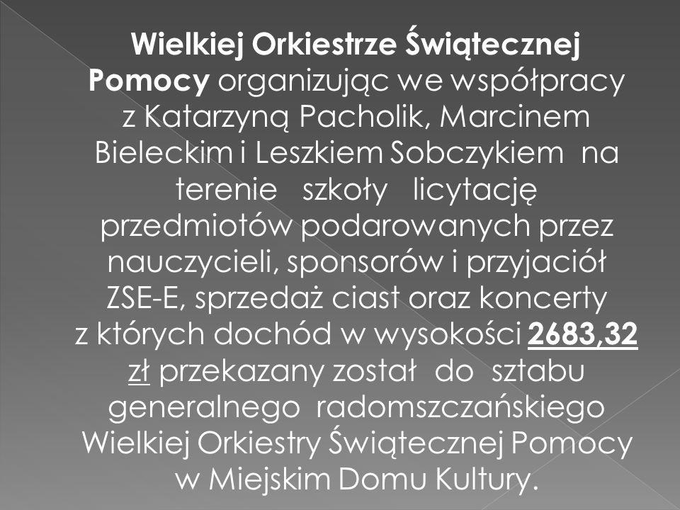 Wielkiej Orkiestrze Świątecznej Pomocy organizując we współpracy z Katarzyną Pacholik, Marcinem Bieleckim i Leszkiem Sobczykiem na terenie szkoły licytację przedmiotów podarowanych przez nauczycieli, sponsorów i przyjaciół ZSE-E, sprzedaż ciast oraz koncerty z których dochód w wysokości 2683,32 zł przekazany został do sztabu generalnego radomszczańskiego Wielkiej Orkiestry Świątecznej Pomocy w Miejskim Domu Kultury.