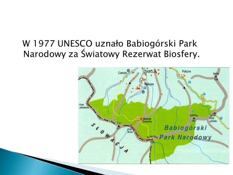 W 1977 UNESCO uznało Babiogórski Park Narodowy za Światowy Rezerwat Biosfery.