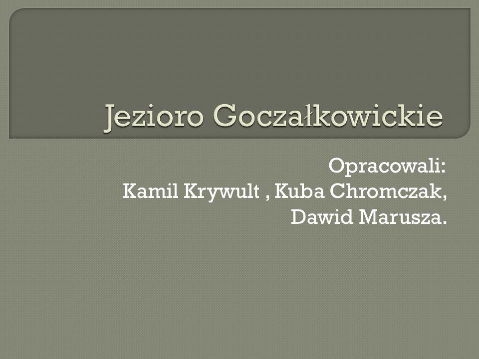 Opracowali: Kamil Krywult, Kuba Chromczak, Dawid Marusza.