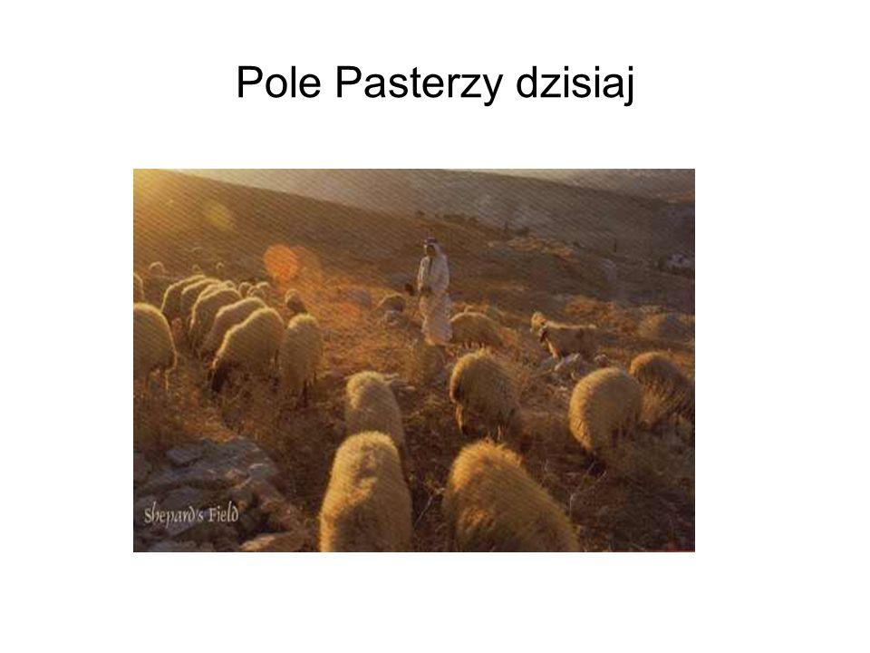 Pole Pasterzy dzisiaj