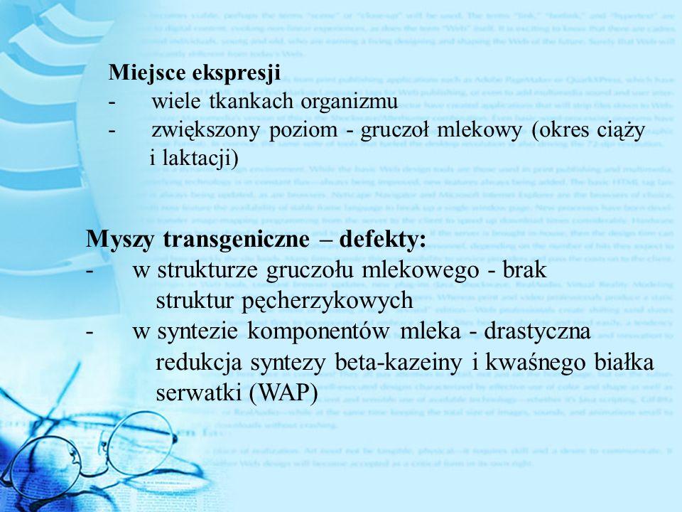 Miejsce ekspresji - wiele tkankach organizmu - zwiększony poziom - gruczoł mlekowy (okres ciąży i laktacji) Myszy transgeniczne – defekty: - w struktu
