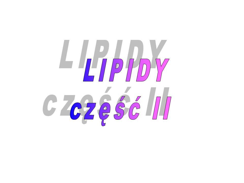 ACPACP Cys FP O \\ S – C – CH 2 – CH 2 – CH 3 O \\ S – C – CH 2 – COO - TRANSACYLAZA MALONYLOWA
