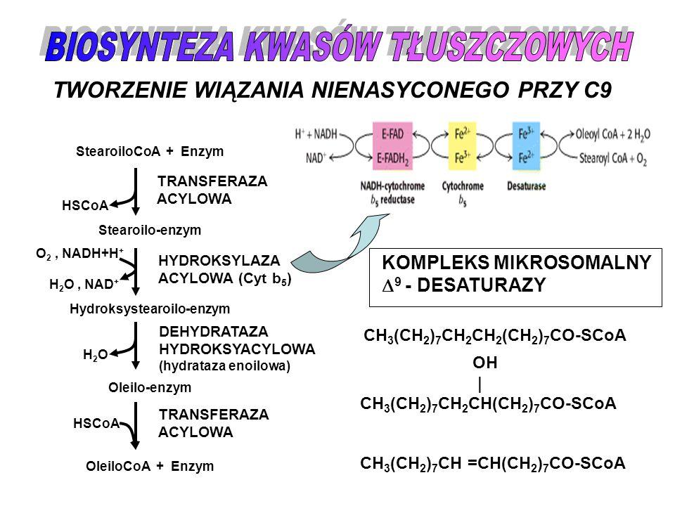 TWORZENIE WIĄZANIA NIENASYCONEGO PRZY C9 StearoiloCoA + Enzym Stearoilo-enzym Hydroksystearoilo-enzym Oleilo-enzym OleiloCoA + Enzym HSCoA H2OH2O O 2,