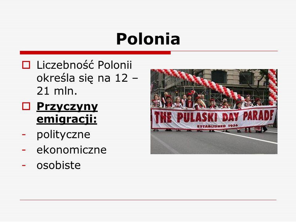 Polonia  Liczebność Polonii określa się na 12 – 21 mln.  Przyczyny emigracji: -polityczne -ekonomiczne -osobiste