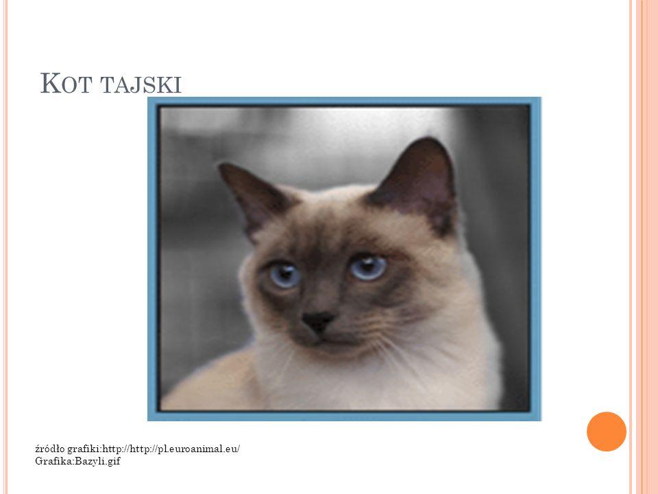 K OT TAJSKI źródło grafiki:http://http://pl.euroanimal.eu/ Grafika:Bazyli.gif