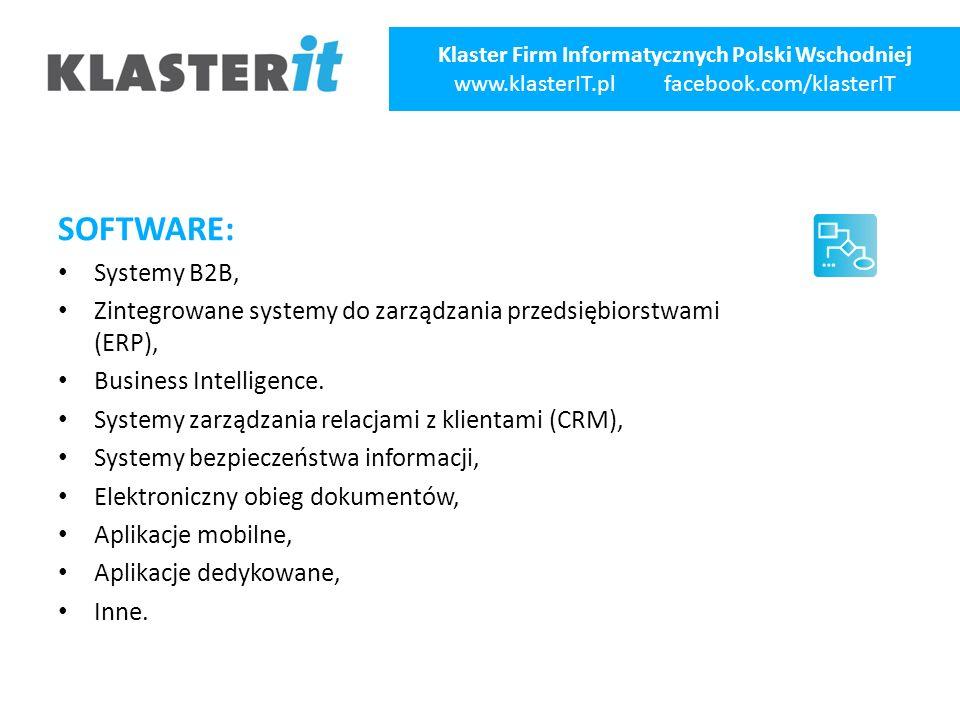 SOFTWARE: Systemy B2B, Zintegrowane systemy do zarządzania przedsiębiorstwami (ERP), Business Intelligence.