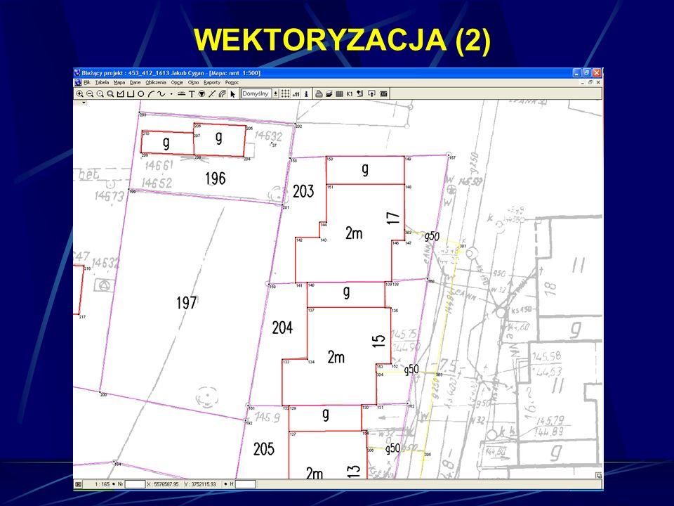 WEKTORYZACJA (2)