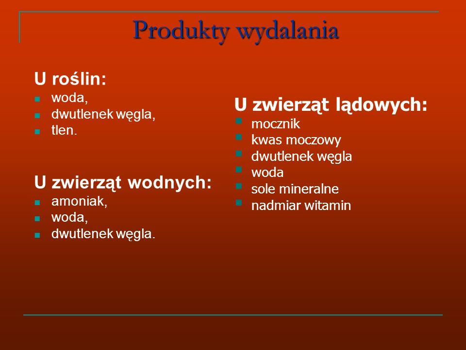 Produkty wydalania U roślin: woda, dwutlenek węgla, tlen.