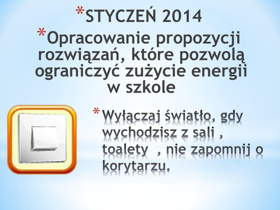 * STYCZEŃ 2014 * Opracowanie propozycji rozwiązań, które pozwolą ograniczyć zużycie energii w szkole