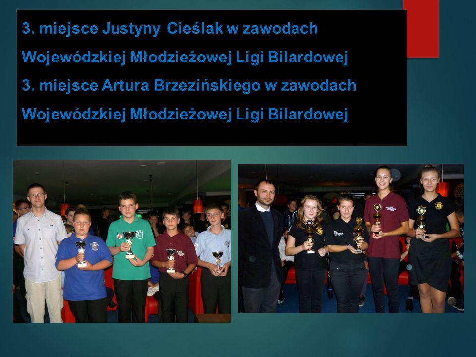1. miejsce Dawida Jagodzińskiego w Wojewódzkim Konkursie Informatycznym ZAWODOWIEC 2013