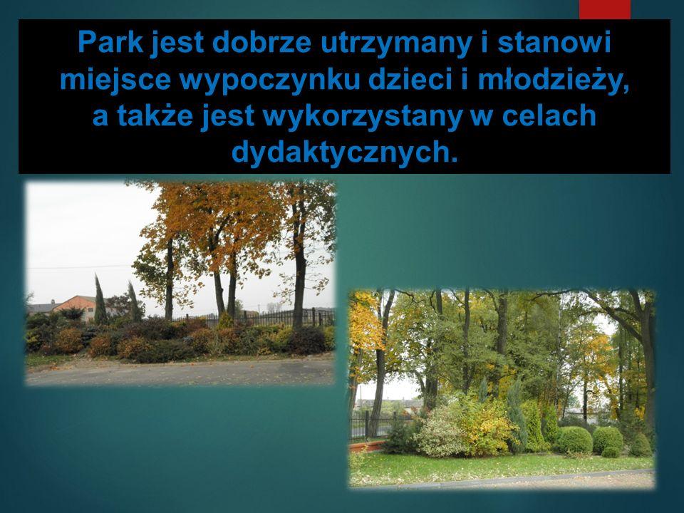 Park jest dobrze utrzymany i stanowi miejsce wypoczynku dzieci i młodzieży, a także jest wykorzystany w celach dydaktycznych.
