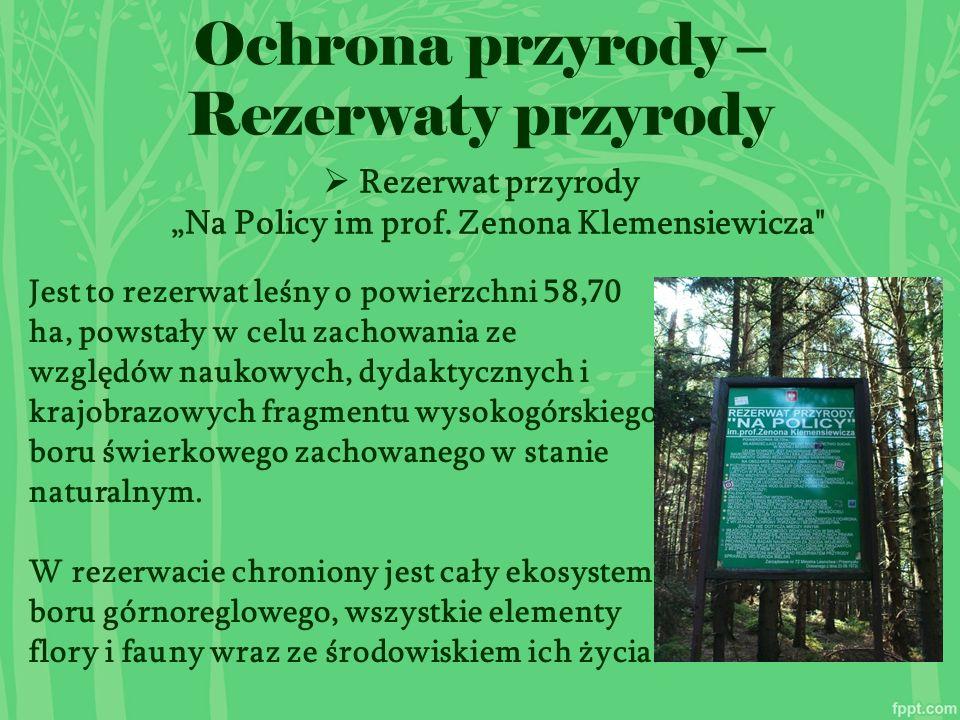 """Ochrona przyrody – Rezerwaty przyrody  Rezerwat przyrody """"Na Policy im prof."""