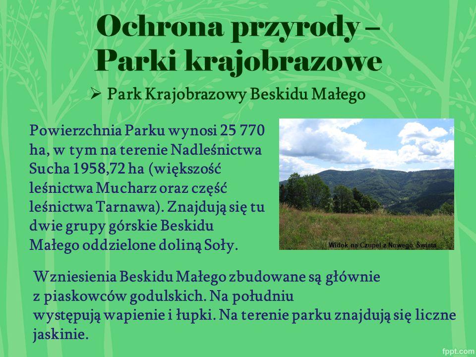  Park Krajobrazowy Beskidu Małego Ochrona przyrody – Parki krajobrazowe Powierzchnia Parku wynosi 25 770 ha, w tym na terenie Nadleśnictwa Sucha 1958,72 ha (większość leśnictwa Mucharz oraz część leśnictwa Tarnawa).