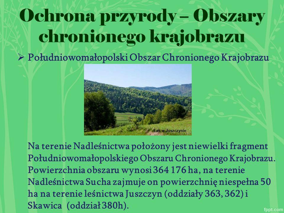  Południowomałopolski Obszar Chronionego Krajobrazu Na terenie Nadleśnictwa położony jest niewielki fragment Południowomałopolskiego Obszaru Chronionego Krajobrazu.